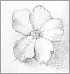 Flower1-