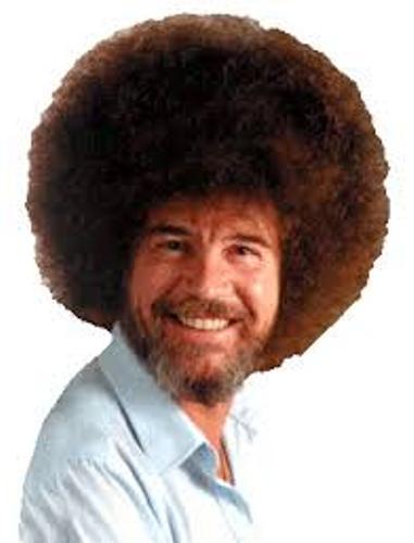 Bob-Ross-Hair